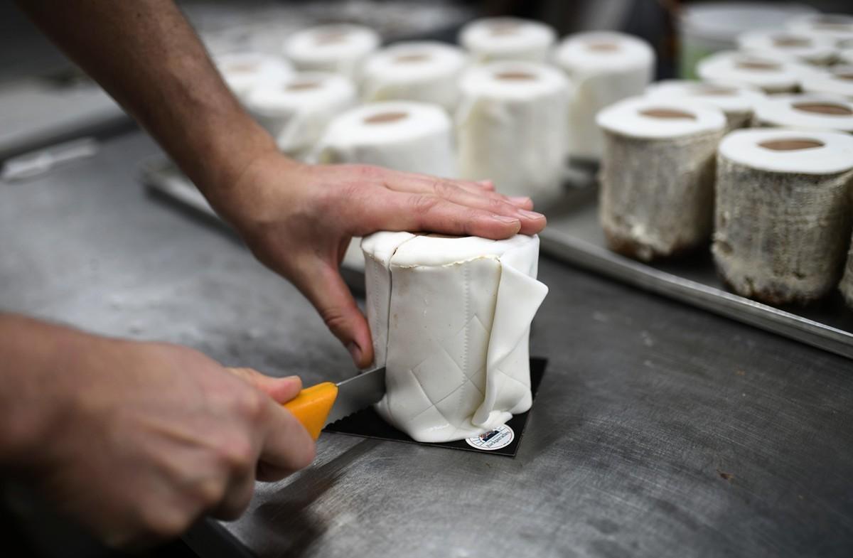 廁紙蛋糕。(Getty Images)