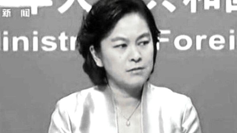 中共外交部發言人華春瑩。(影片截圖)