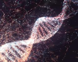 細胞如何讀取基因揭秘:像從線軸上拉取棉線