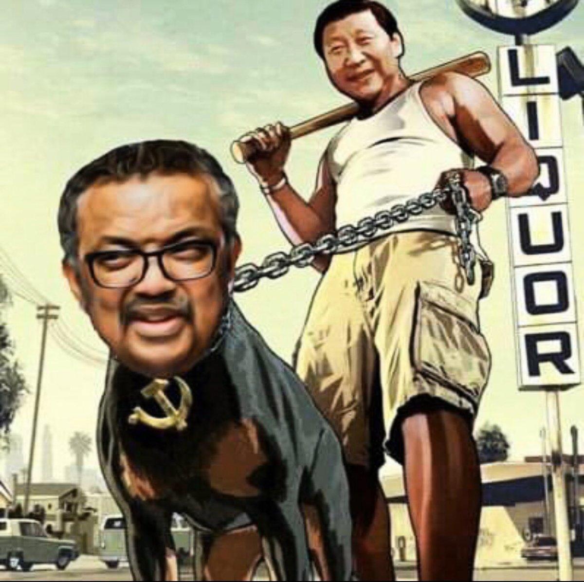 民眾回應世衛秘書長譚德塞,稱他是「中國(共)代理人!」(網絡圖片)