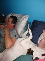 男主人睡眠呼吸暫停症 鬥牛犬狂吠叫醒女主人施救