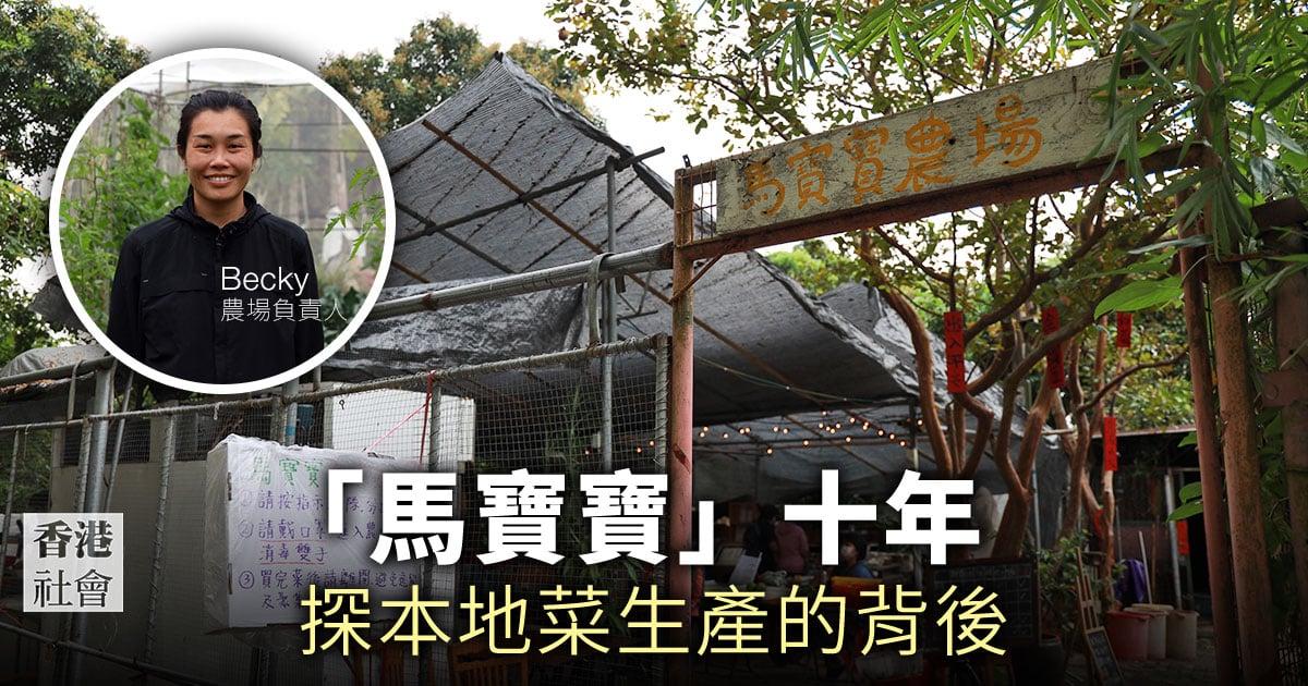 馬寶寶社區農場為市民提供新鮮本地蔬菜。(陳仲明/大紀元)