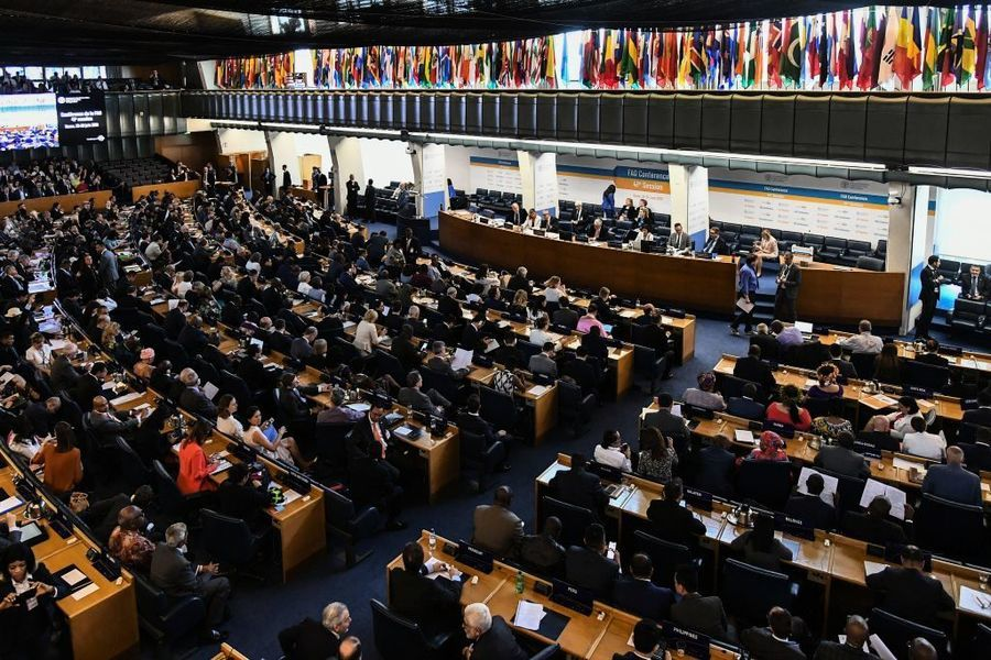 3大國際組織罕有聯名警告:全球恐爆糧荒