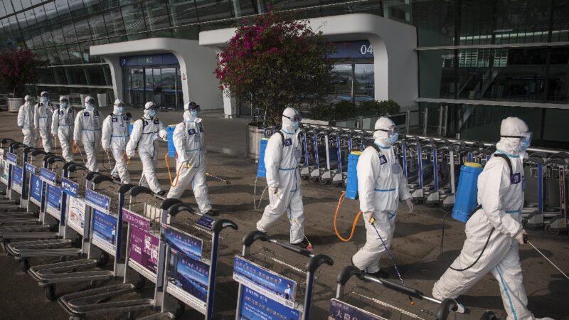 石正麗曾瘋狂查記錄 病毒專家:中共病毒可能從武漢實驗室洩漏