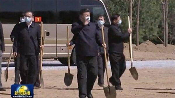 3日習近平一行在植樹活動時,仍然全部戴著口罩全程防護。(影片截圖)