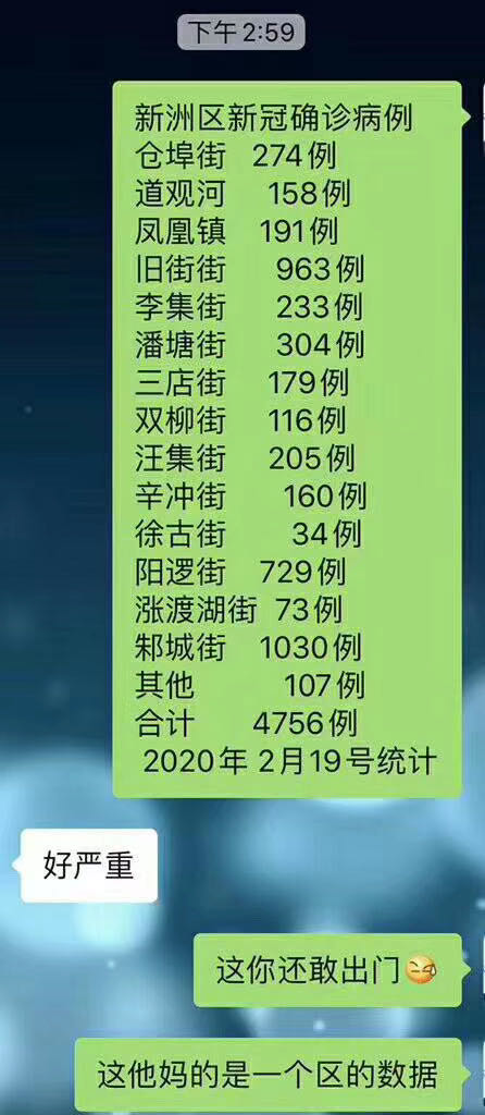 網傳17日和19日武漢新洲區確診病例內部數據。(網絡圖片)