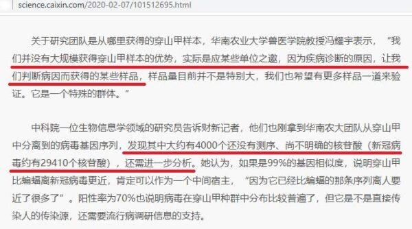 華農專家:這批染毒穿山甲是「某些單位」主動提供的。(財新網報道截圖)