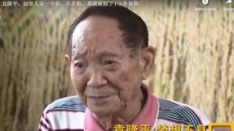 去年,雜交水稻育種專家袁隆平接受官媒採訪時坦言,中國的糧食是不夠吃的,「別國不賣,就麻煩了。」(影片截圖)