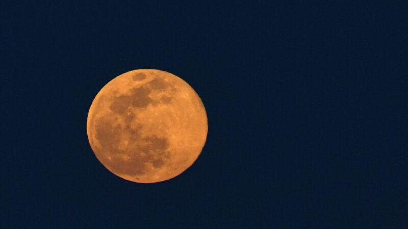 不忘推窗賞月 2020年最大超級粉紅月亮