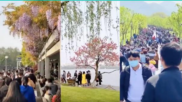 清明時節,杭州幾萬人同游西湖,人數遠超黃山。(推特截圖)