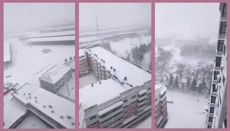 2020年4月,黑龍江清明下大雪。(推特影片截圖)