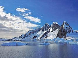 研究:九千萬年前南極是雨林氣候