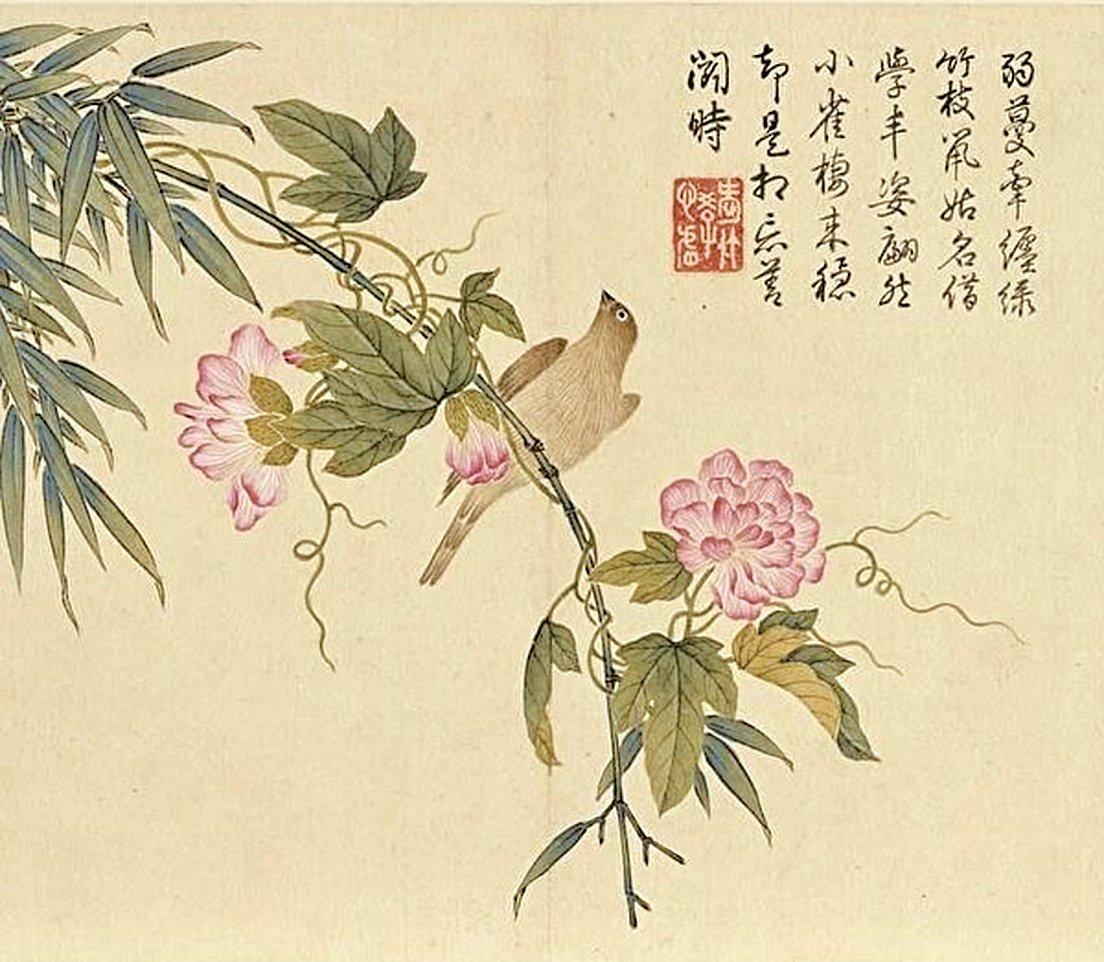 清‧楊大章花鳥冊《纏枝牡丹黃雀》(公有領域)