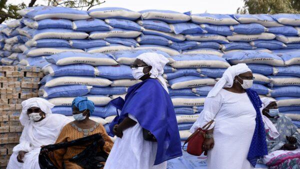 中共又在全球大肆搜刮糧食。示意圖(SEYLLOU/AFP via Getty Images)