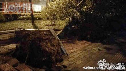 北京朝陽區日壇路於23日晚刮起強風,道路兩旁的樹被連根拔起。(網絡圖片)