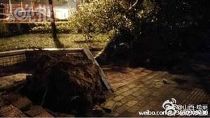 狂風暴雨襲擊北京 39景區關閉