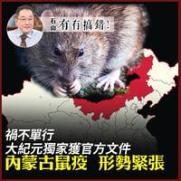 禍不單行 大紀元獲中共官方文件 內蒙古鼠疫 形勢緊張