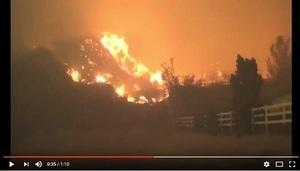 山火席捲加州 數千戶疏散 1人被燒死