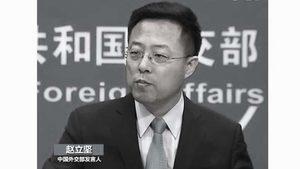 《環球時報》為中共「戰狼」外交官正名