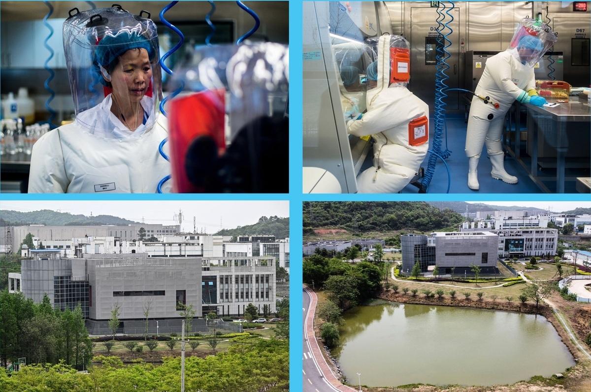 2017年甫落成的武漢病毒研究所P4實驗室。左上為蝙蝠冠狀病毒專家、新發傳染病研究中心主任石正麗。(HECTOR RETAMAL,JOHANNES EISELE/AFP via Getty Images)