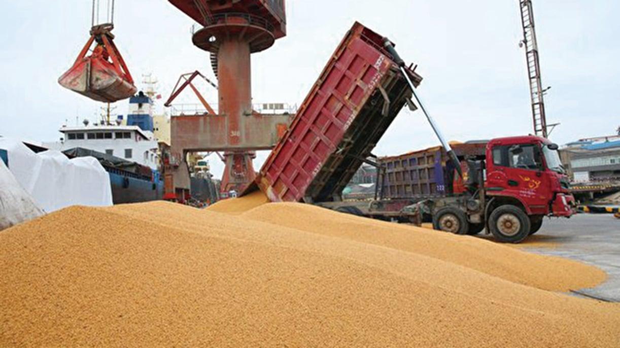 分析人士認為,疫情下,中國將面臨糧荒,這會出大事情,可能因此而改朝換代。示意圖(Getty Images)