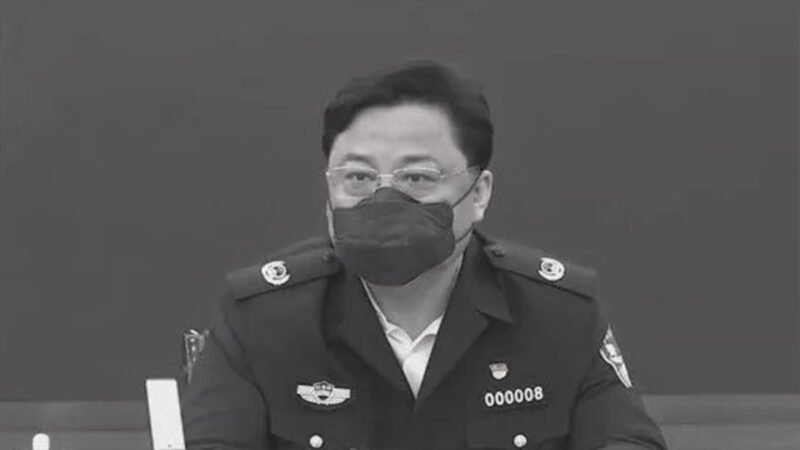 孫立軍落馬前是武漢抗疫的中央指導組成員。(影片截圖)