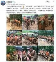 央視抗洪報道遭軍方「打臉」 習對陣劉雲山