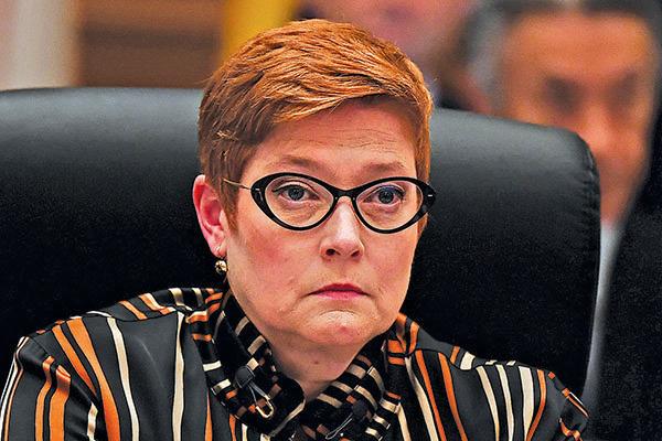 去年11月,佩恩參加在日本舉行的G20外長會議。(Getty Images)