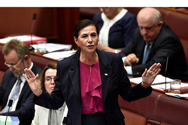 澳洲自由黨聯邦參議員Concetta Fierravanti-Wells表示,一旦大瘟疫結束,澳洲應考慮在貿易關係上與中共政權「脫鉤」。(Concetta Fierravanti-Wells面書)