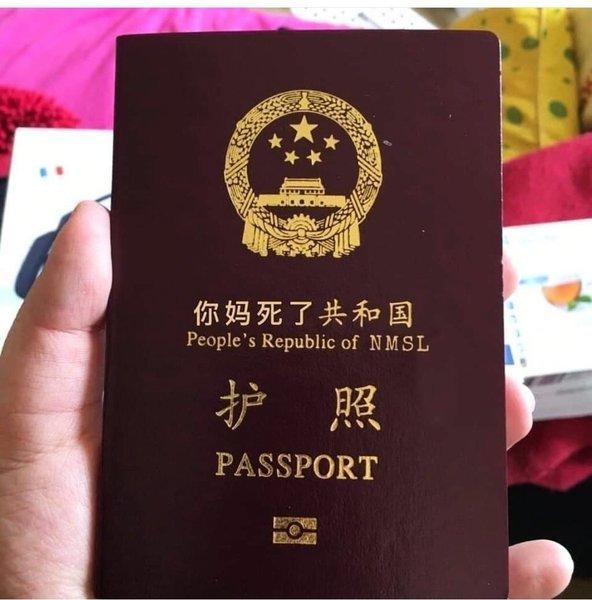 民眾改名中國護照為「你媽死了共和國護照」 傳遍網絡