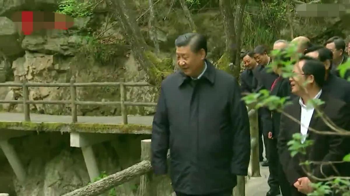 習近平說,秦嶺是中華民族的「祖脈」和中華文化的重要象徵。(影片圖片)