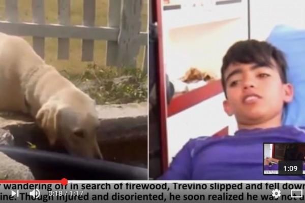 墨西哥一名男孩日前參加夏令營之旅,在山上迷了路,幸運得到一隻拉布拉多犬相助,兩天後終於獲救。(YouTube截圖)