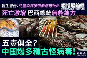 【5.1疫情最前線】五毒俱全? 中國爆多種古怪病毒!