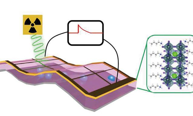 新型探測器為X光成像技術帶來革命性變化