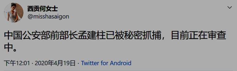 孫力軍落馬當天,4月19日晚,自稱為越南華人議員的「西貢何女士」在推特爆料說:「中國公安部前部長孟建柱已被秘密抓捕,目前正在審查中。」(網絡截圖)