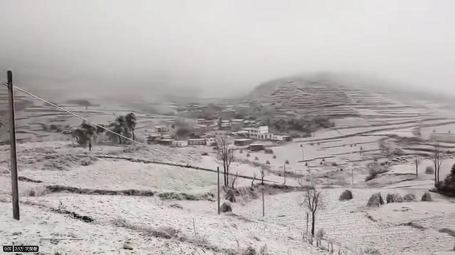 黑龍江5月飛雪氣溫驟降30度 農民絕望