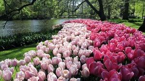 世界最美花園七十年首次關園 虛擬參觀以饕全球民眾