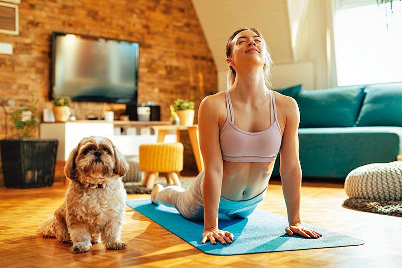 和寵物互動,有助於人釋放壓力、減輕焦慮。(shutterstock)
