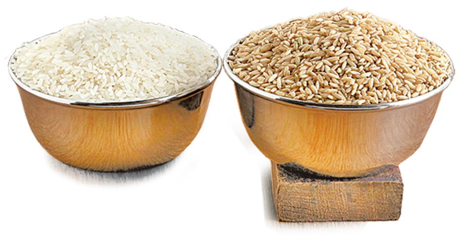 相較於牛奶和其它替代奶,米漿是最不容易引起過敏反應的飲品。