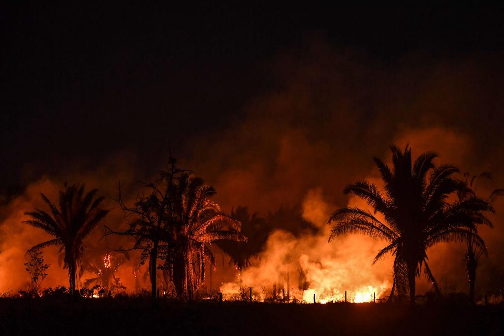 亞馬遜地區去年經歷森林大火,環境破壞是11年來最嚴重,其森林砍伐量,今年前4個月與去年2019年同期相比增加55%。(NELSON ALMEIDA/AFP via Getty Images)