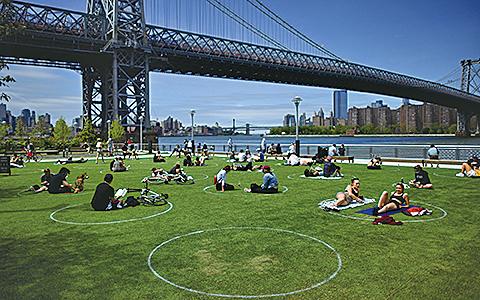 在紐約市布魯克林多米諾公園草坪上,塗了很多白色圓圈,以幫助日光浴者和野餐者保持距離。(AFP)