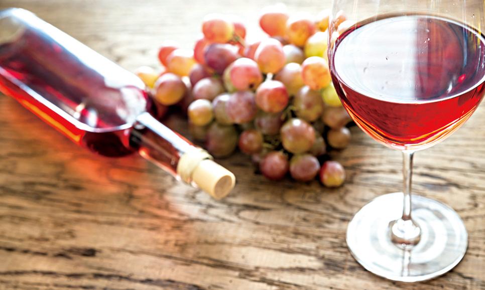 普羅旺斯的露西酒給人一種悠閒清新之感。