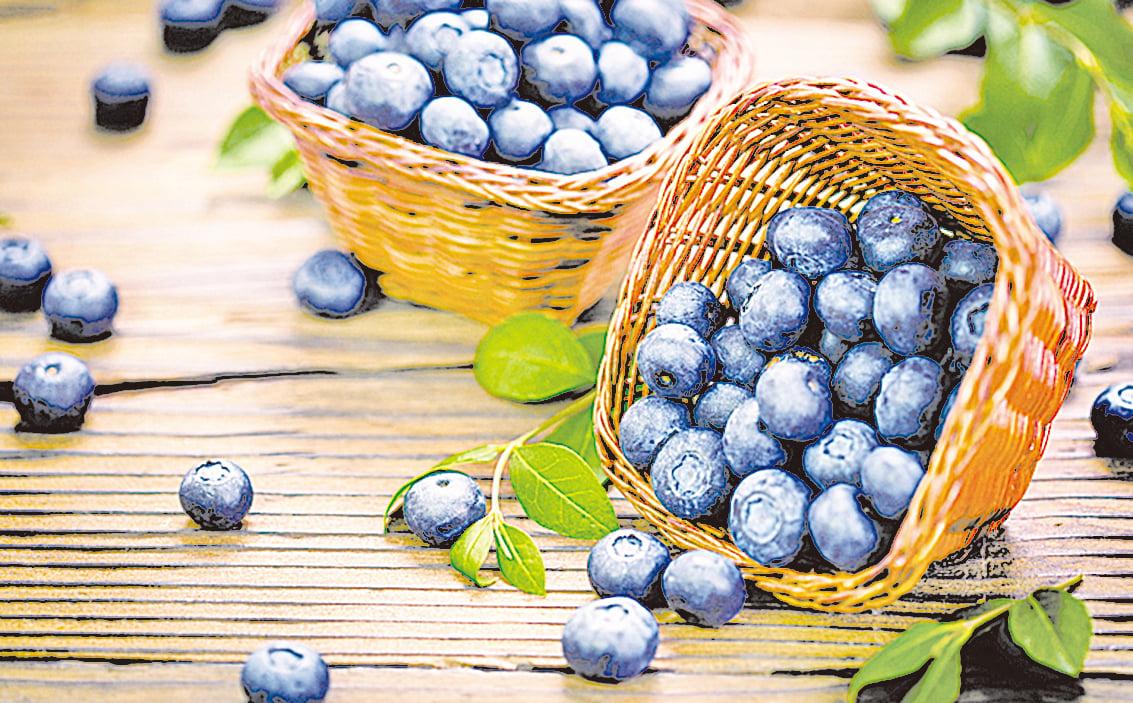 藍莓中的白藜蘆醇可以抑制流行性感冒病毒的複製。