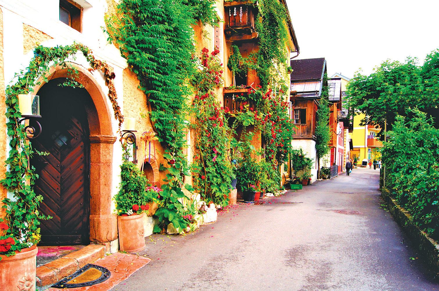 鮮花籐蔓點綴的街道。