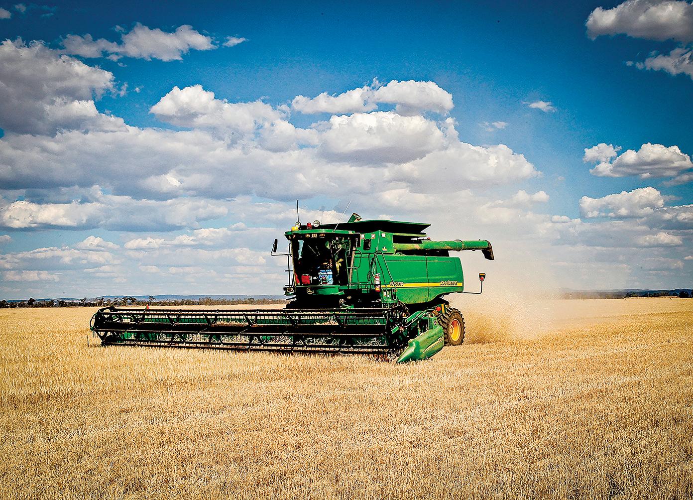 中共稱自5月19日起向澳洲大麥徵收80%的關稅,徵收期限為5年。澳洲政府否認中共對澳洲「傾銷大麥」的不實指控,並將向世界貿易組織提出申訴。圖為新州中西部Grenfell農場收割的景象。(GREG WOOD/AFP via Getty Images)
