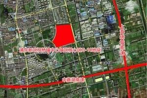 上海再誕88億元地王 建成每平米至少售6萬