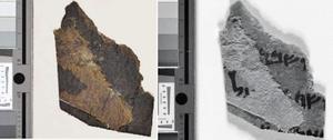 用於研究的死海古卷 碎片上發現字跡