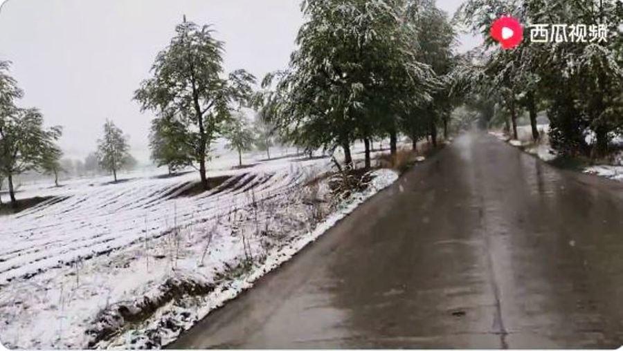 天現異象 青海多地夏日降大雪