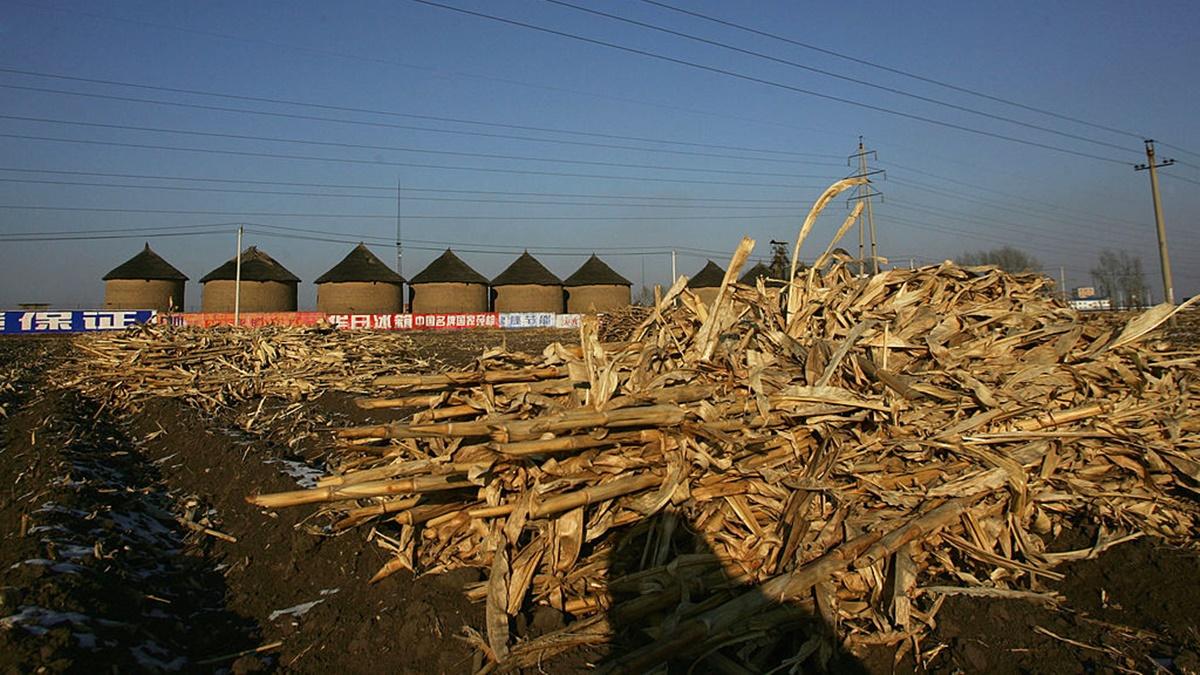 自去年中共清查糧食庫存以來,各地糧庫大火不斷,凸顯中共官員貪污虧空糧食情況嚴重。圖為資料圖片。(China Photos/Getty Images)