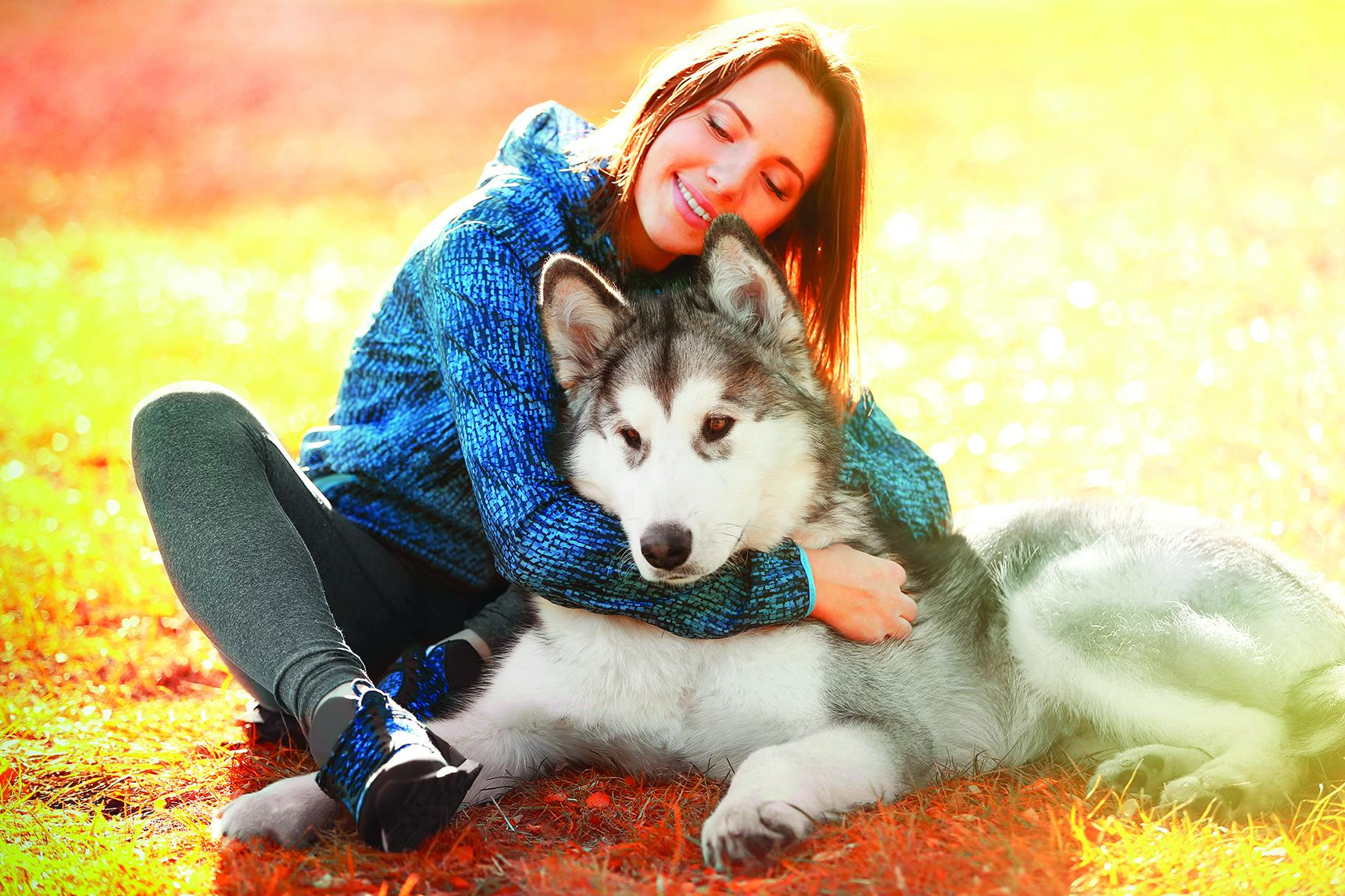飼養阿拉斯加雪橇犬的飼主通常須花大量時間來滿足它們對運動的渴望。